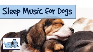Sleep Music for Dogs and Puppies! Relaxing Music for Dogs by RelaxMyDog - Try today! Amazing!