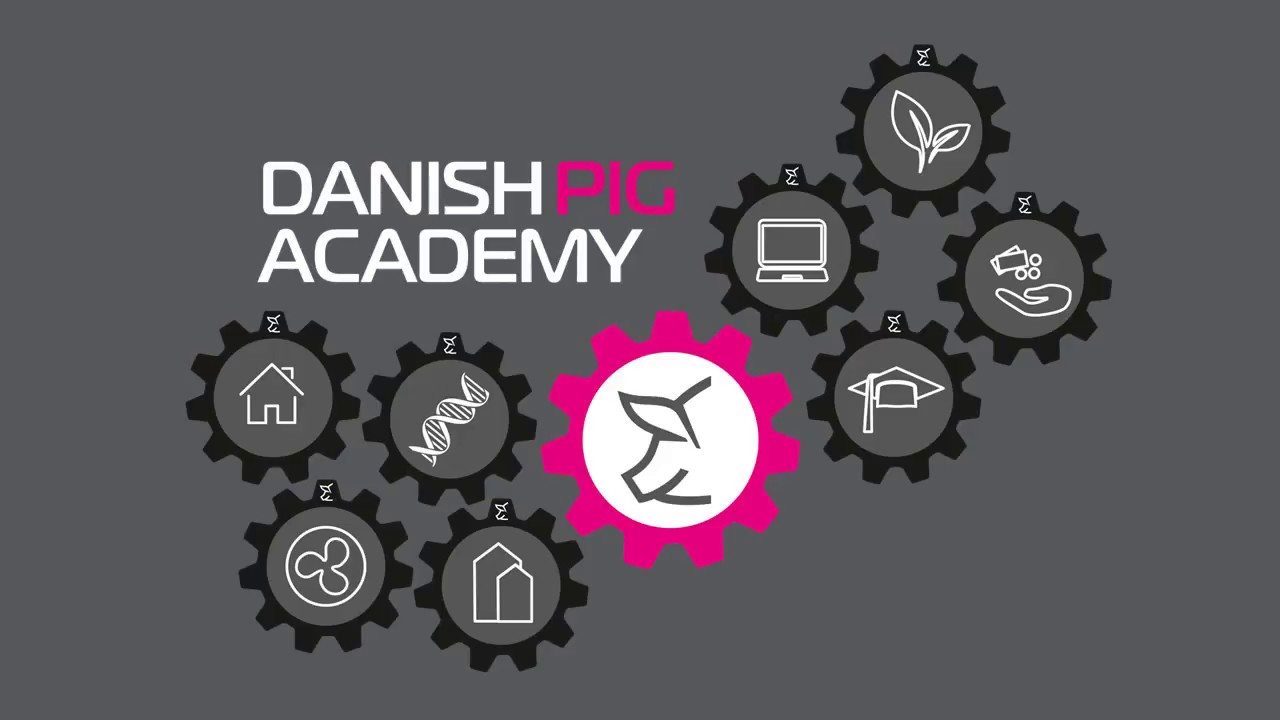 Download Danish Pig Academy - Showroom and Conference center