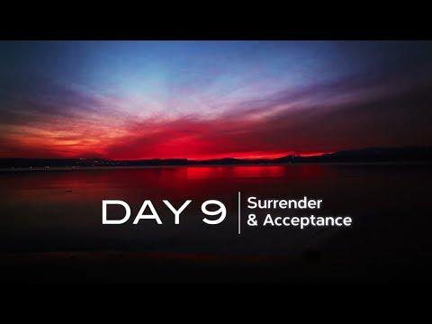 DAY 9: SURRENDER & ACCEPTANCE | www.themeaningoflife.tv