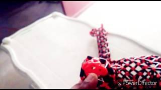 ஒட்டகசிவிங்கி giraffe making in plastic wire intro