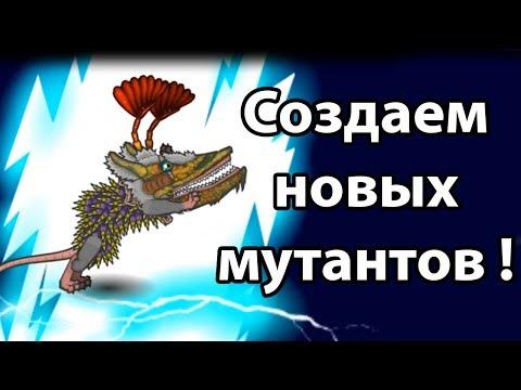 Видео Играть онлайн бесплатно без регистрации игровые автоматы лягушки