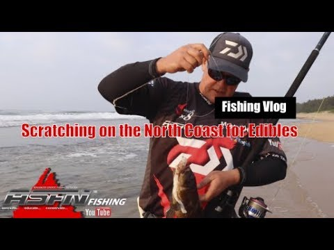 Scratching On The North Coast KZN South Africa  - [ASFN Fishing] Vlog