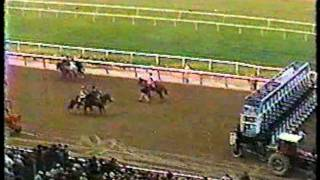 1979 Jockey Club Gold Cup + pre/post race