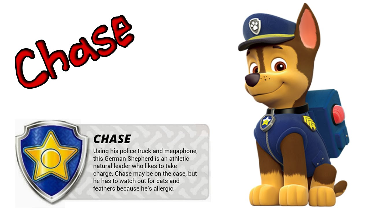 Dibujos Para Colorear Patrulla Canina Chase: Cómo Dibujar Paso A Paso A CHASE, De La Patrulla Canina