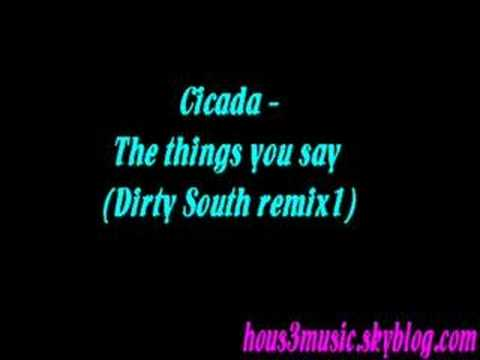 Cicada  The things you say Dirty South remix1