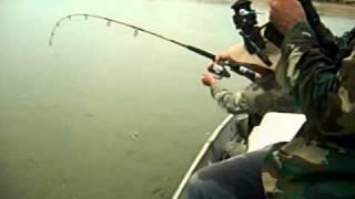 pesca de surubi  en rio ichilo 4