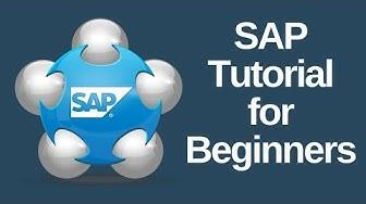 SAP Tutorial for Beginners