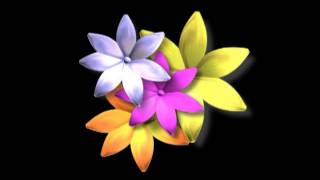 Beautiful Flower Wallpaper background Animated HD - Looping , Free video download