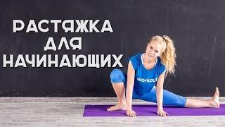 Растяжка для начинающих [Workout | Будь в форме]