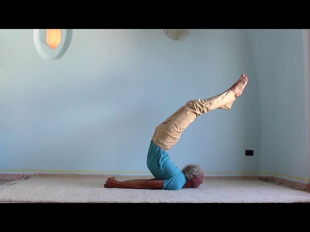 Yoga Arte - Die Heuschrecke - salabhasana - mit einem Ausdruck von Körperunabhängigkeit