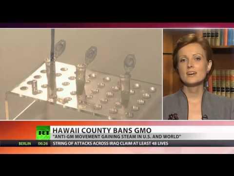 GMO Free Hawaii  'Big Island' bans biotech companies   YouTube