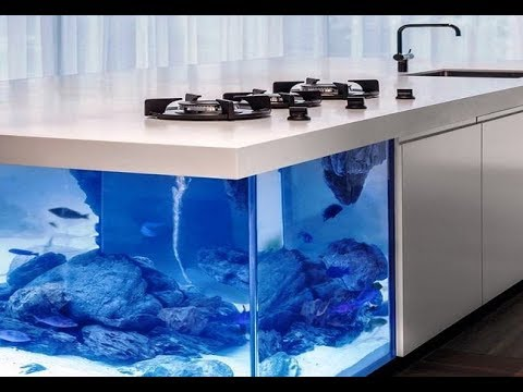don't really know if id like a fish tank on my kitchen ...