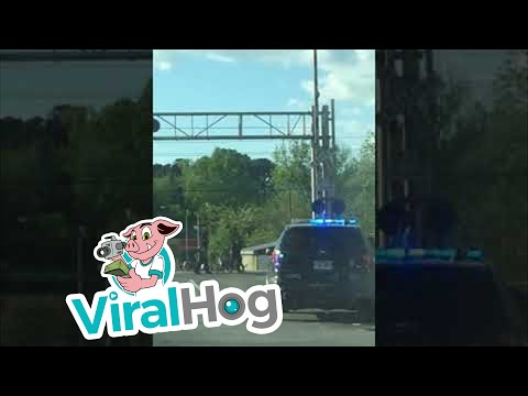 Police Pull Over Little Girl || ViralHog