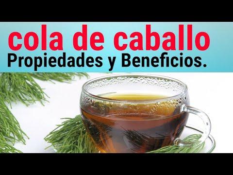 Planta Medicinal Cola