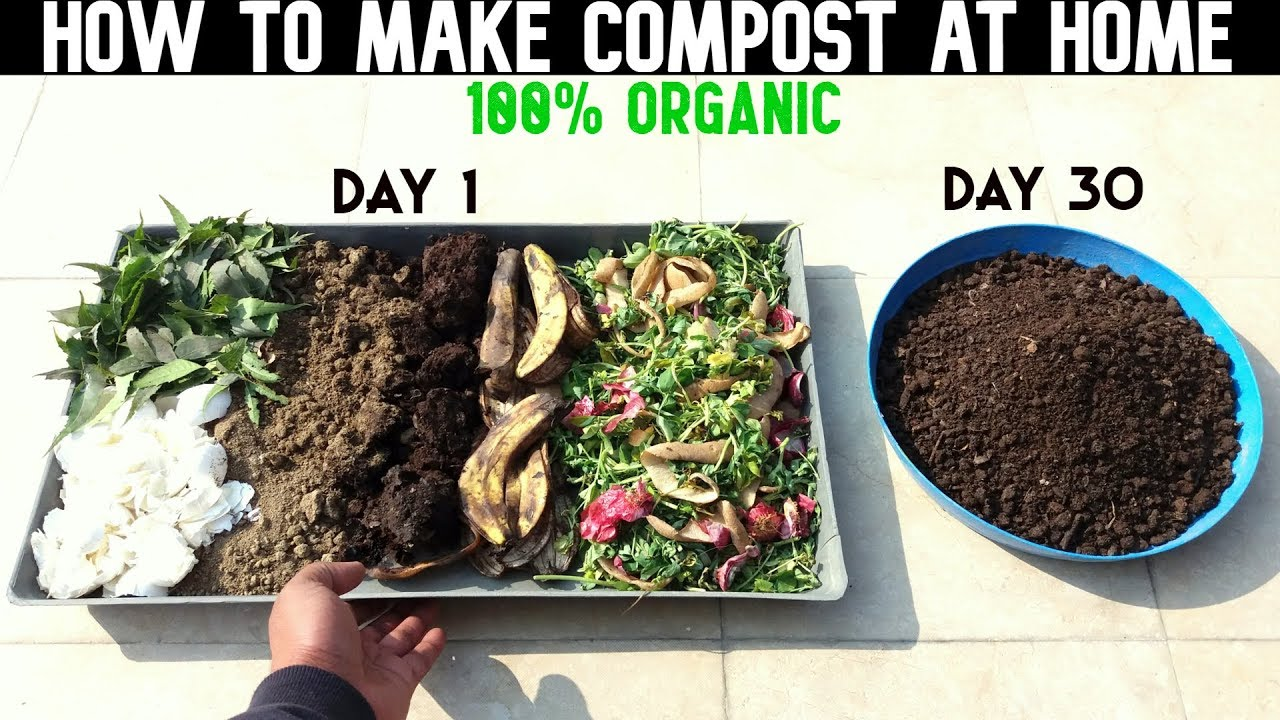 How To Make Compost At Home With Full Updates Youtube