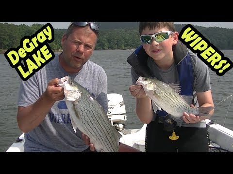 Wipers on DeGray Lake in Arkansas Structure Fishing 2017