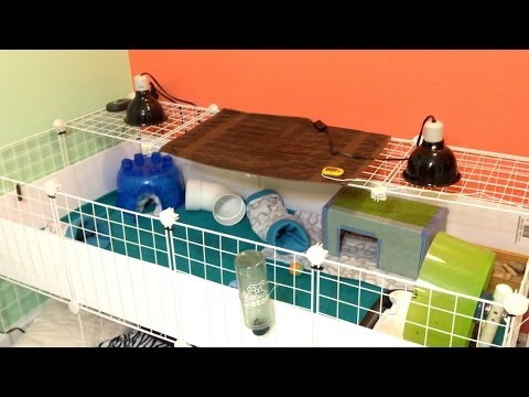 Hedgehog Heat Set Up - YouTube