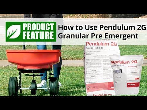How to Use Pendulum 2G Granular Pre Emergent Herbicide   DoMyOwn com