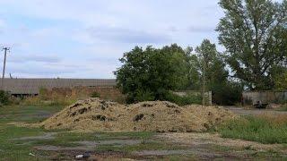Разведение червей и производство биогумуса. Фермерское хозяйство