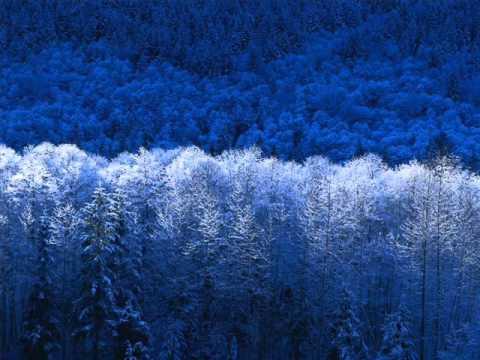 Hard Trance Winter Minimix ( By Fares Bk )