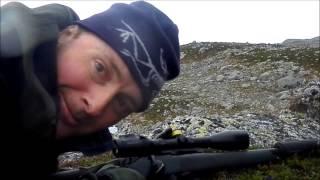 reinsdyr jakt med blaser r 93 i norge reindeer hunt with blaser r 93 in norway