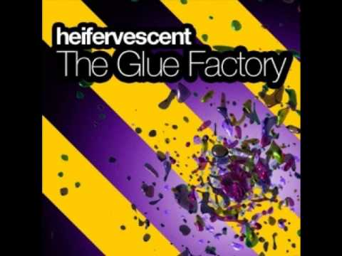 Magnetized - Heifervescent