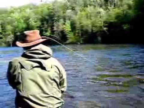 Muskegon River Steelhead - Fly Fishing Steelhead - Betts Guide Service