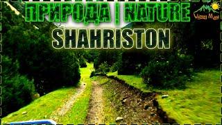 Табиати Шахристон 2020 | Природа Шахристон 2020 | Nature Shahristan 2020
