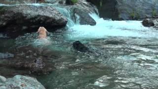 トガサワラ原始林の沢を上流へ!水が冷たい!