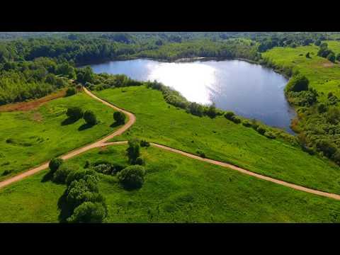 Озеро Сомино. Купить участок со своим берегом в Ленинградской области (канал Лучшие Земли).