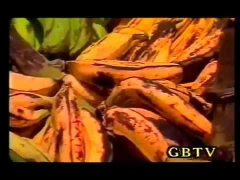 G.B.T.V. CultureShare ARCHIVES 1986:   CALYPSO FOR AFRICA