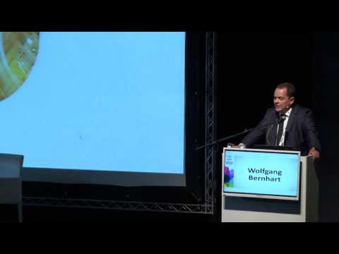 Dr. Wolfgang Bernhart - The Israeli Smart Mobility Industry Report - Fuel Choices Summit 2016