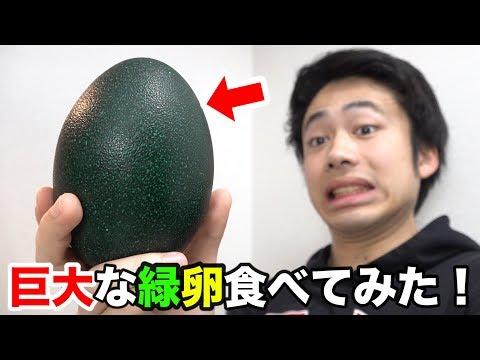 巨大で緑色な「エミューの卵」食べてみたら味がヤバかった!?