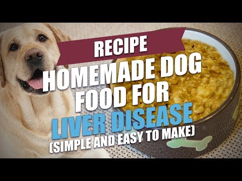 homemade-dog-food-for-liver-disease-recipe-(easy-to-make)