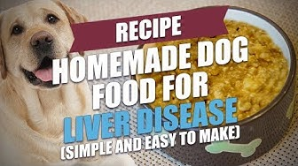 Homemade Dog Food for Liver Disease Recipe (Easy to Make)