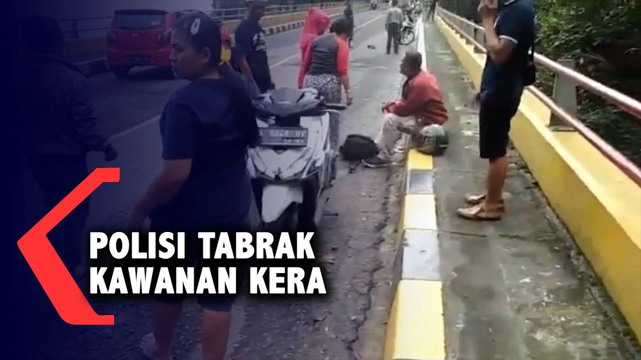 Polisi Tabrak Kera Hingga Mati, Kawanan Kera Lainnya Menyerang