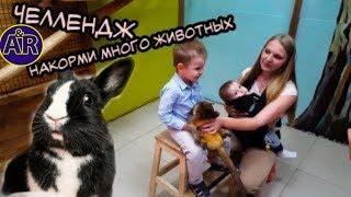 Самый большой контактный зоопарк в Москве,Тц Вегас.Кормим и гладим животных.