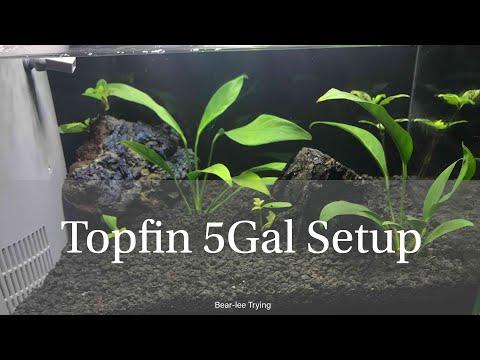 Topfin 5Gallon Aquarium kit Setup