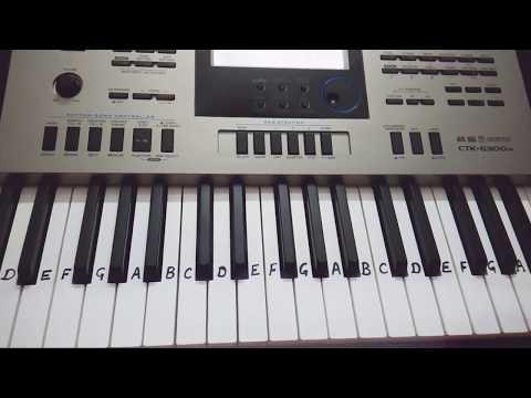 Mere Rashke Qamar On Keyboard - Casio - Piano Tutorial
