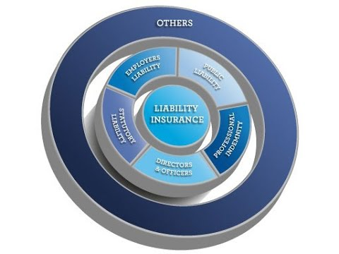 The 5 types of liability insurance your business may need | AMP