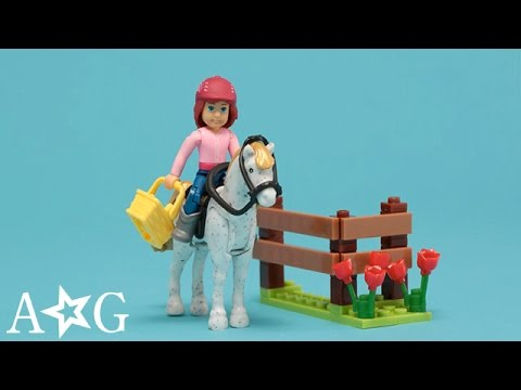 Saige's Picnic: Picasso The Hungry Horse | WellieWishers Mega Construx | American Girl