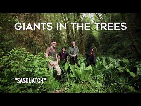 Giants in the Trees  Sasquatch  Video