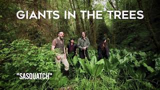 Giants in the Trees - Sasquatch (Official Video)
