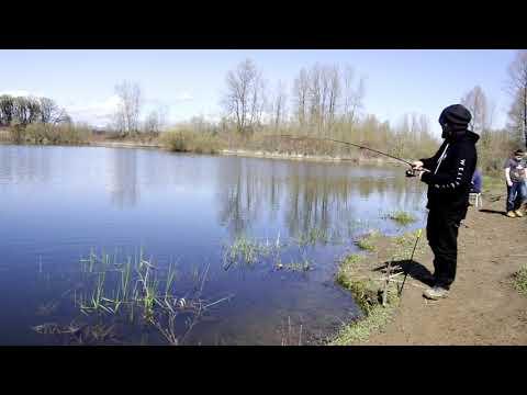 Welcome To Oregon Fishing (EE Wilson)
