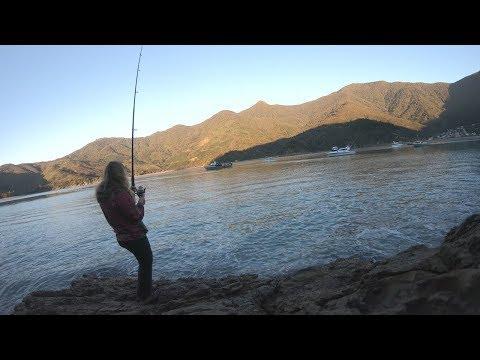 FISH'N NZ MARLBOROUGH SOUNDS