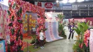 TOKYO International Quilt Festival  2013