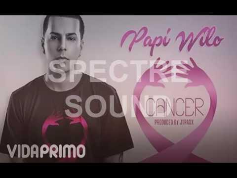 CANCER-PAPI WILO-INSTRUMENTAL