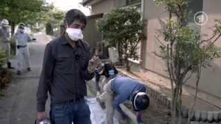 Ranga Yogeshwar in Fukushima (ARD, 03.11.2014, 22:45)