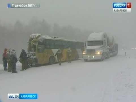 Проверка по ДТП с автобусом