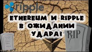 видео Популярность блокчейна Ripple растет